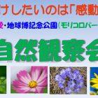 morikoro_shizenkansatsukai