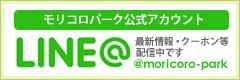 banner_moricoroline