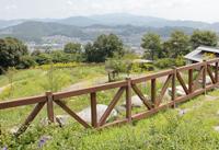 三河山野草園
