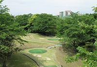 ベビーゴルフ(パターゴルフ)