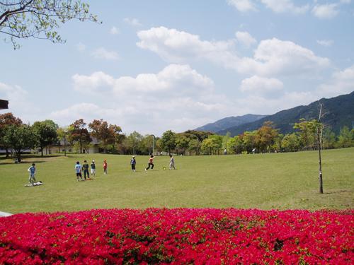 park-tokuchou