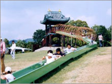 shinshiro-wanpaku02