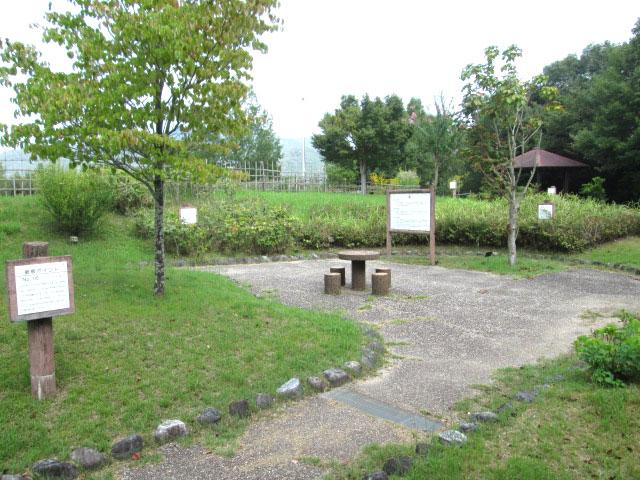 shinsiro-gakusyuunomori