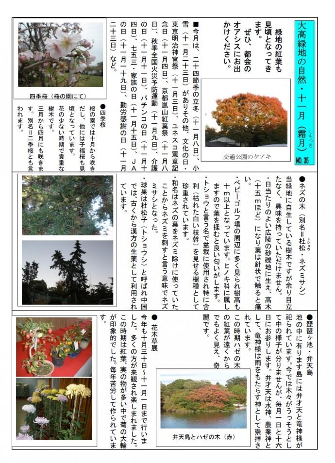 大高緑地の自然・27年11月jpeg