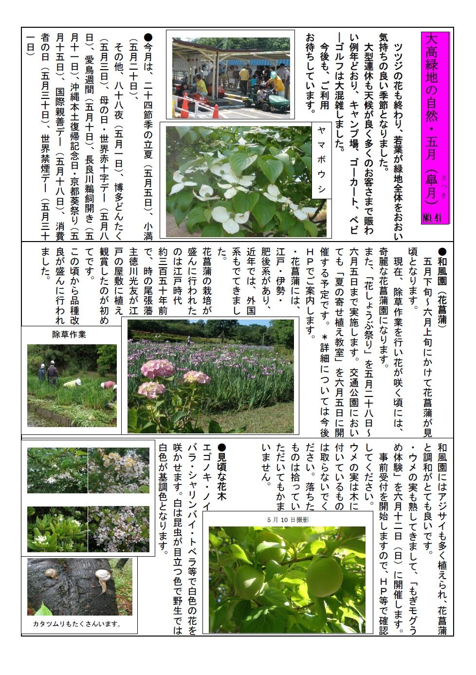 大高緑地の自然・28年5月jpeg