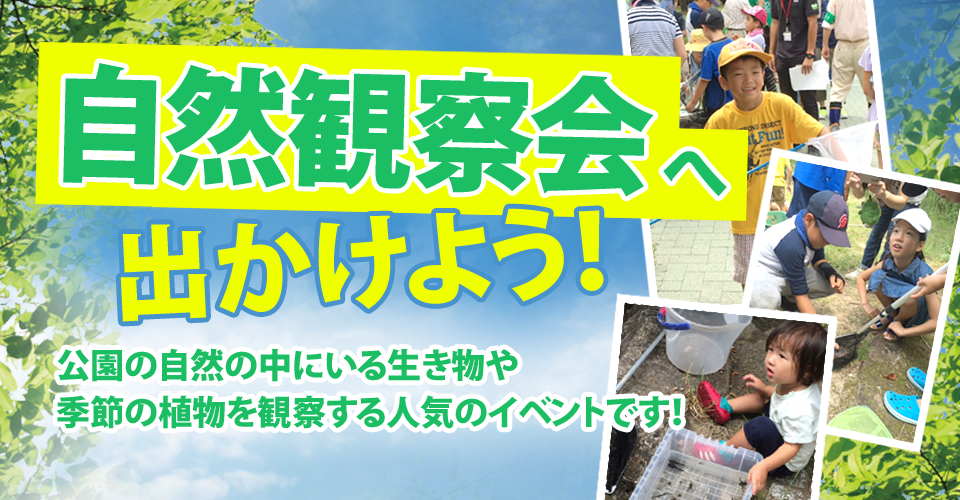 banner_shizenkansatsukai