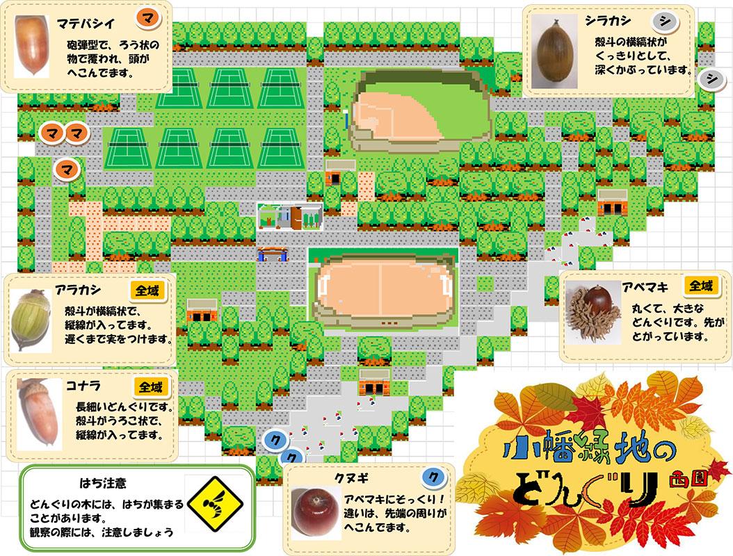 小幡緑地どんぐり拾いマップ西園