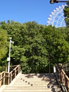 愛・地球博記念公園(モリコロパーク)どんぐり