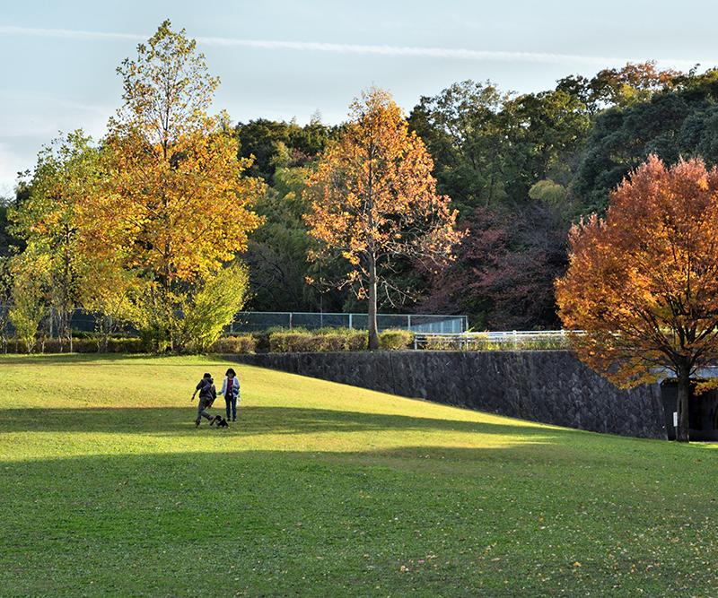 第11回 ふれあい百景フォトコンテスト牧野ヶ池緑地 優秀賞『秋日和』