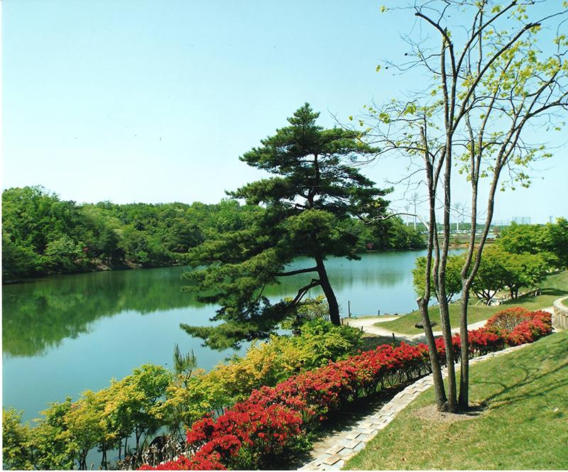 第11回 ふれあい百景フォトコンテスト愛・地球博記念公園 入選『水辺の春』