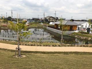 水生花園(碧南)