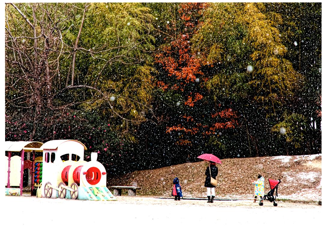入選 雪また楽し 牧野ケ池緑地