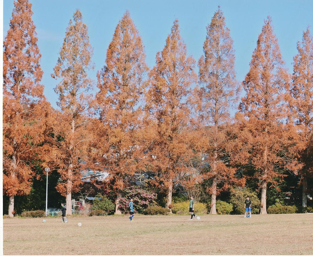 入選 メタセコイヤの下で遊ぶ子供たち 小幡緑地